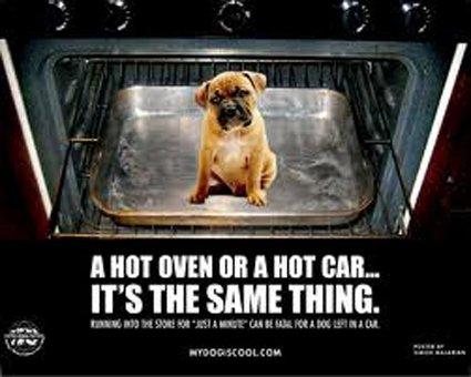 Avertissement de voiture chaude: Source: Blog.timesunion.com