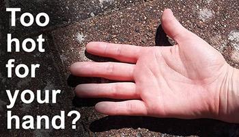 Si le trottoir est trop chaud pour votre main, il fait trop chaud pour la patte de votre chien © RSPCA