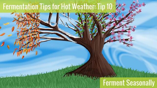 Conseils de fermentation par temps chaud - Fermenter de façon saisonnière. | makesauerkraut.com