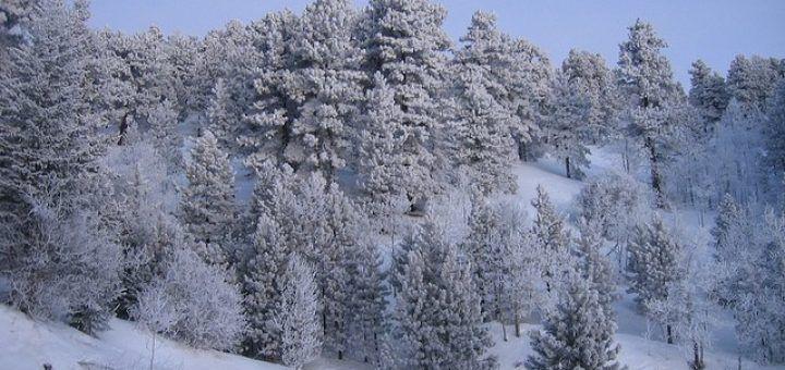 la Sibérie, l'endroit le plus froid du monde