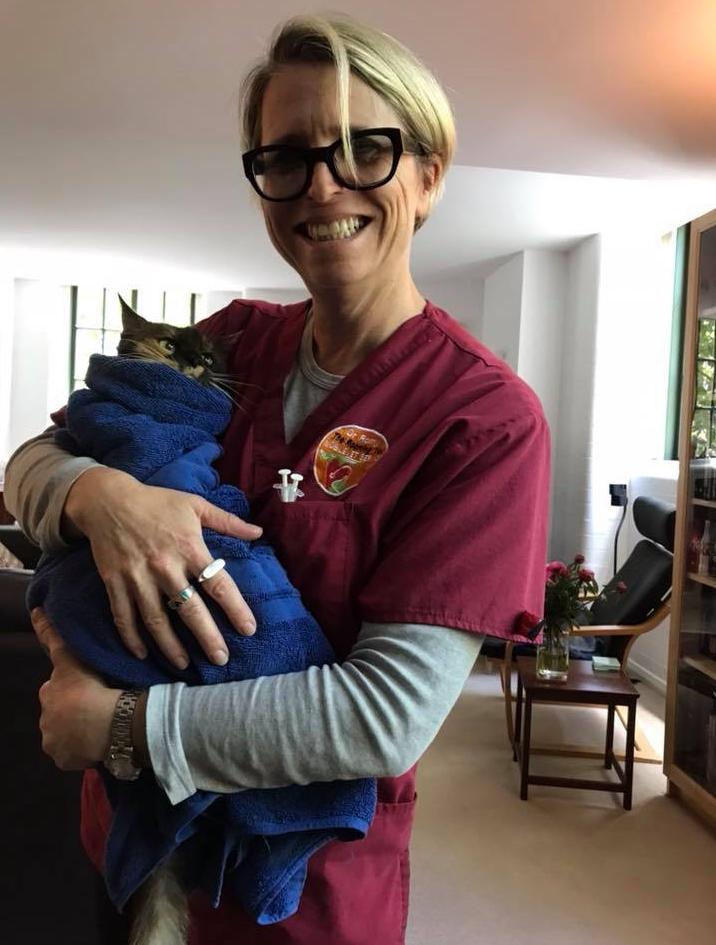 Le vétérinaire de Sydney, Romy Feldman, a mis en garde les propriétaires d'animaux de compagnie sur la santé des chats et des chiens dans une épaisse fumée de feu de brousse.