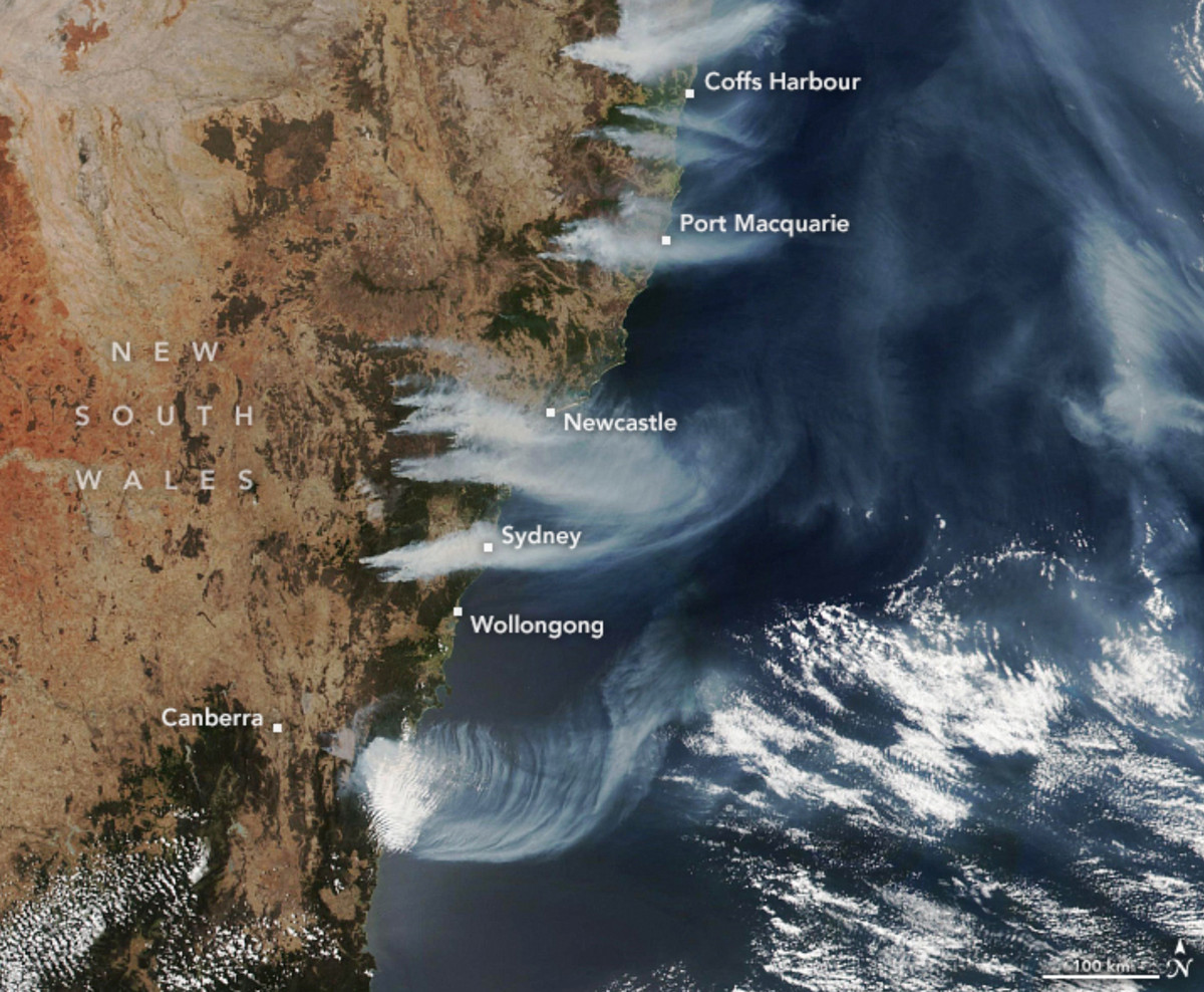 Une image satellite de la fumée des feux de brousse flottant sur le sud-est de l'Australie le 4 décembre 2019.