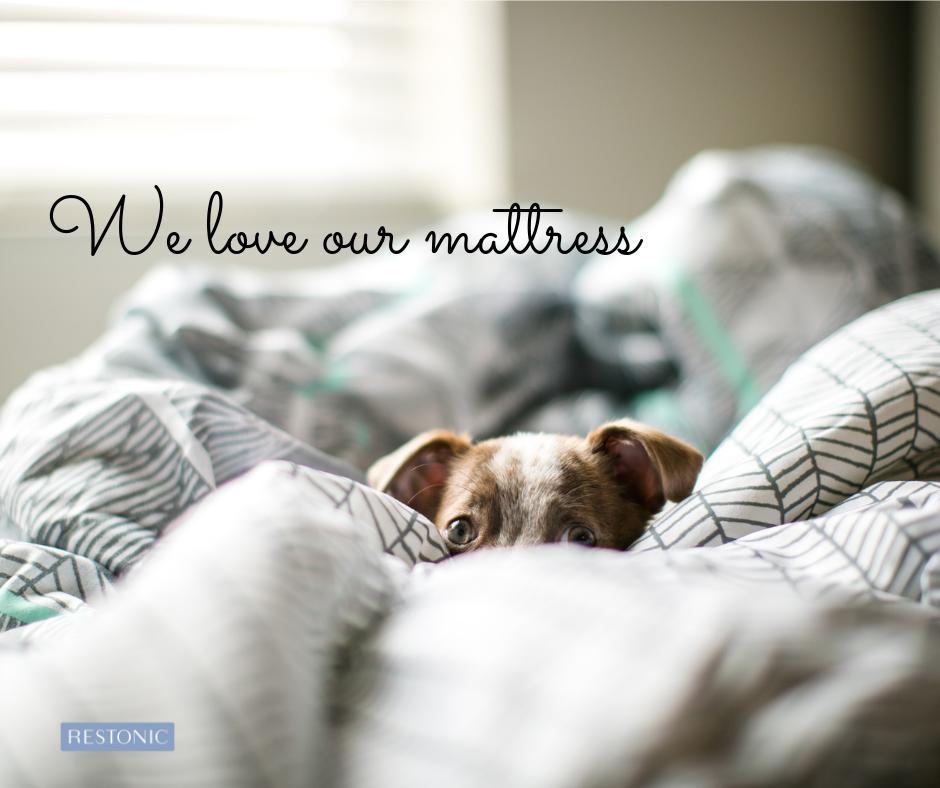 Comment choisir la meilleure couverture pour une bonne nuit de sommeil