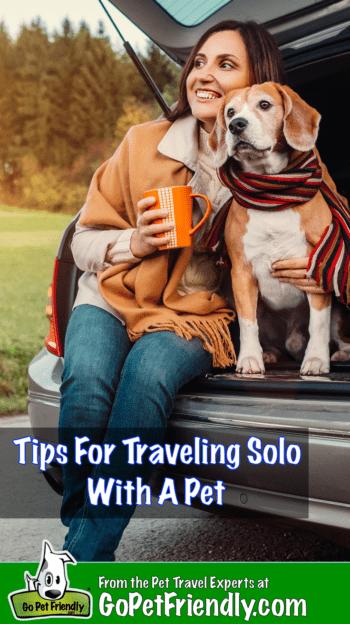 Conseils pour voyager seul avec des animaux domestiques | GoPetFriendly.com