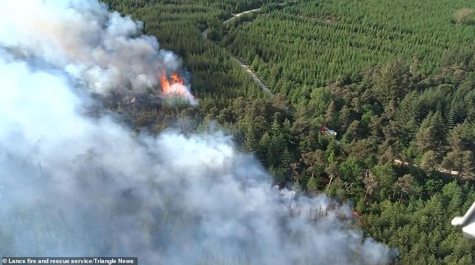 Des images de drones montrent la dévastation causée par un incendie qui a détruit des centaines d'arbres à Longridge Fell, Lancashire, au cours du week-end